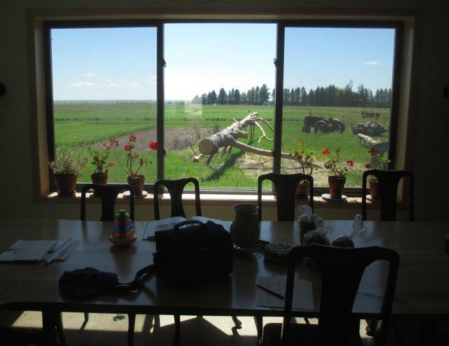 window onto Food Farm
