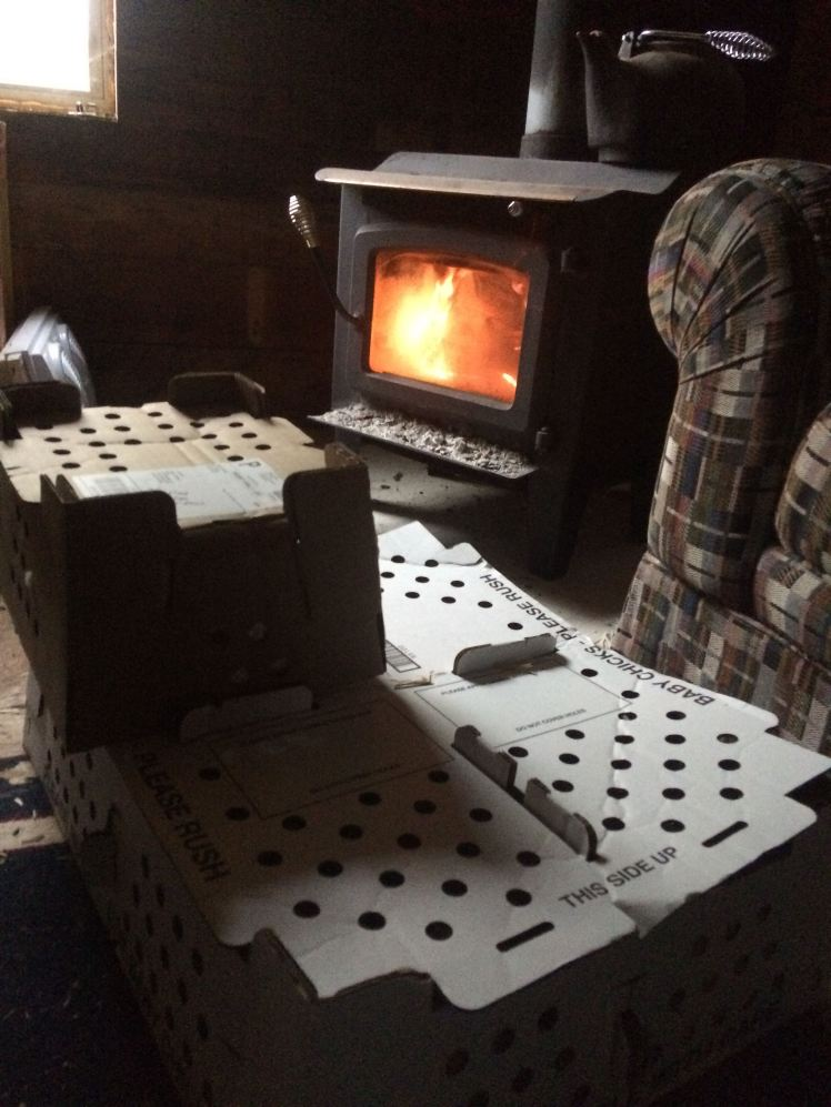 chicks woodstove